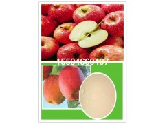 苹果粉果粉斯诺特生物厂家直供
