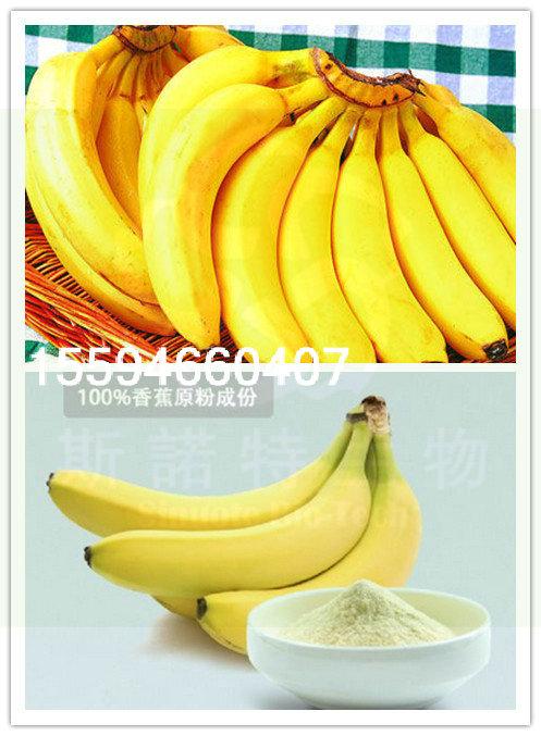 香蕉粉水果粉厂家直供斯诺特生物