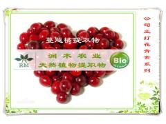 植物提取物厂家供应-蔓越莓提取物原花青素 25%