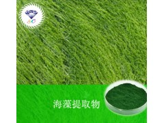 海藻提取物 现货