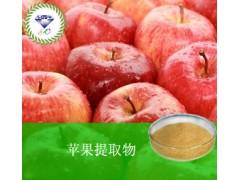 苹果提取物  厂家直销