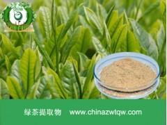 绿茶粉 现货供应