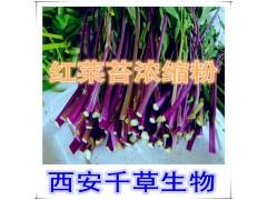 红菜苔提取物水溶粉