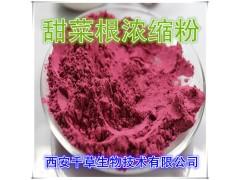 甜菜根提取物水溶粉