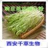 豌豆苗提取物水溶粉