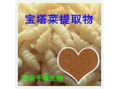 宝塔菜提取物水溶粉