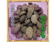 木鳖子提取物水溶粉