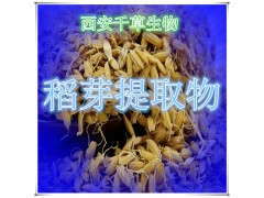 稻芽提取物水溶粉