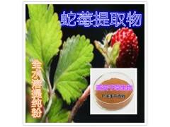 蛇莓提取物水溶粉