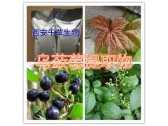 乌蔹莓提取物水溶粉
