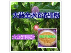 大号山土豆原粉