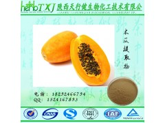 木瓜提取物4:1 木瓜粉 SC证天行健厂家直供 饮料香料食品添加剂 量大从优