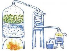 硫酸软骨素钠