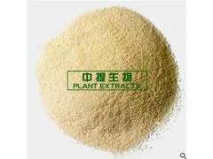人参皂苷粉 人参皂甙粉80% 人参提取物 100克一袋 纯天然植物提取