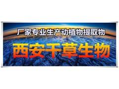 陈皮粉 理气健脾 药食同源 实力厂家生产全水溶陈皮提取物