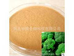萝卜硫素1% 西兰花提取物 纯天然提取 厂家现货包邮【中提】