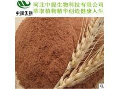 供麦芽提取物 规格10:1 麦芽提取物 专业植提厂 现货包邮【中提】