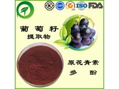 葡萄籽提取物,葡萄籽多酚,原花青素,厂家直供纯天然植物提取物,比例提取物,果蔬粉