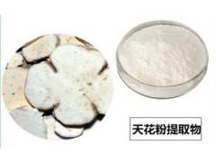 供应优质天花粉提取物10:1 生产厂家现货直销 新货包邮
