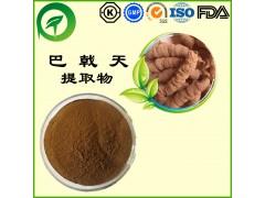 巴戟天提取物,厂家直供纯天然植物提取物,比例提取物,果蔬粉,瓜拉纳,
