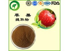 苹果提取物,厂家直供纯天然植物提取物,比例提取物,果蔬粉