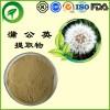 蒲公英提取物,厂家直供纯天然植物提取物,比例提取物,果蔬粉