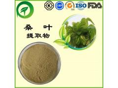 桑叶提取物,厂家直供纯天然植物提取物,比例提取物,果蔬粉