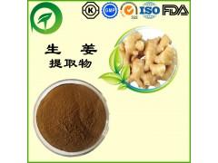 生姜提取物,厂家直供纯天然植物提取物,比例提取物,果蔬粉