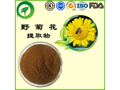 野菊花提取物,厂家直供纯天然植物提取物,比例提取物,果蔬粉