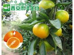 鲜橘提取物