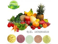【厂家现货】水果酵素粉 高品质复合果蔬酵素 100%纯天然果蔬发酵