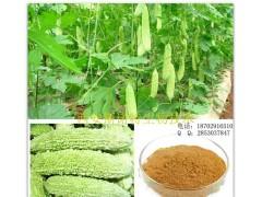 苦瓜甙10% 纯天然苦瓜提取物  苦瓜粉 清火降糖优质保健原料