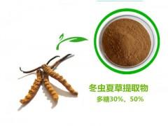 虫草提取物 虫草多糖 冬虫夏草提取物 蛹虫草提取物品质保证