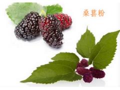 桑葚果汁粉 桑葚果粉 果蔬粉 食品饮料粉