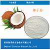 100%全速溶椰子粉 椰子果粉 厂家现货供应 固体饮料果粉