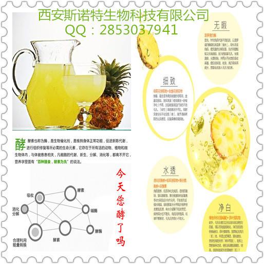 厂家直销纯天然100% 菠萝粉 速溶菠萝果粉 酵素粉