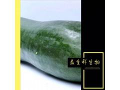 冬瓜粉 优质 冬瓜提取物  固体饮料代餐粉专用 益生祥直销
