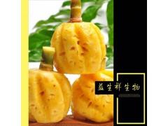 速溶菠萝粉 益生祥凤梨粉固体饮料代餐果汁粉原料菠萝提取物