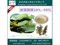 岩藻黄质10~50% 海带提取物 慈缘专业生产
