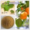柿子叶提取物 柿叶黄酮20~40% 慈缘专业生产