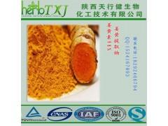 四氢姜黄素98% 姜黄提取物 100g小包装 欢迎试用 QS厂家天行健HPLC检测 保质保量