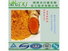 姜黄素98% 合成姜黄素 高纯度姜黄素 QS厂家自然提取工艺加工 可提供第三方外检SC HALAL厂家