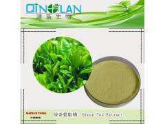 绿茶提取物  抗氧化  抗辐射