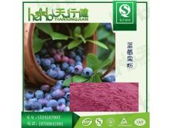蓝莓粉 100%速溶蓝莓果汁粉 蓝莓固体饮料果粉 天然蓝莓果粉 蓝莓花青素 QS厂家现货包邮