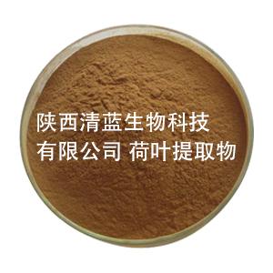 荷叶提取物  荷叶碱  清热解暑  减肥通便
