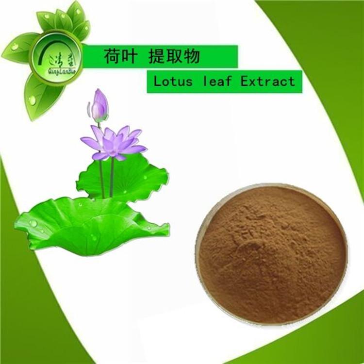 荷叶提取物  荷叶碱 荷叶浓缩粉 清热解暑  减肥通便