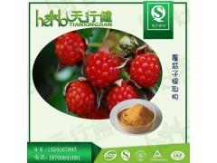 覆盆子提取物 覆盆子黄酮4% 覆盆子酮 树莓提取物 覆盆子粉 QS天行健厂家现货直销 欢迎咨询