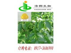 黄连藤天然提取  符合05版标准  盐酸小檗碱找浩翔生物