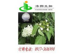 泡桐叶/枇杷叶天然提取 熊果酸单体物质找宝鸡浩翔生物