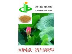 荷叶提取物Lotus leaf P.E